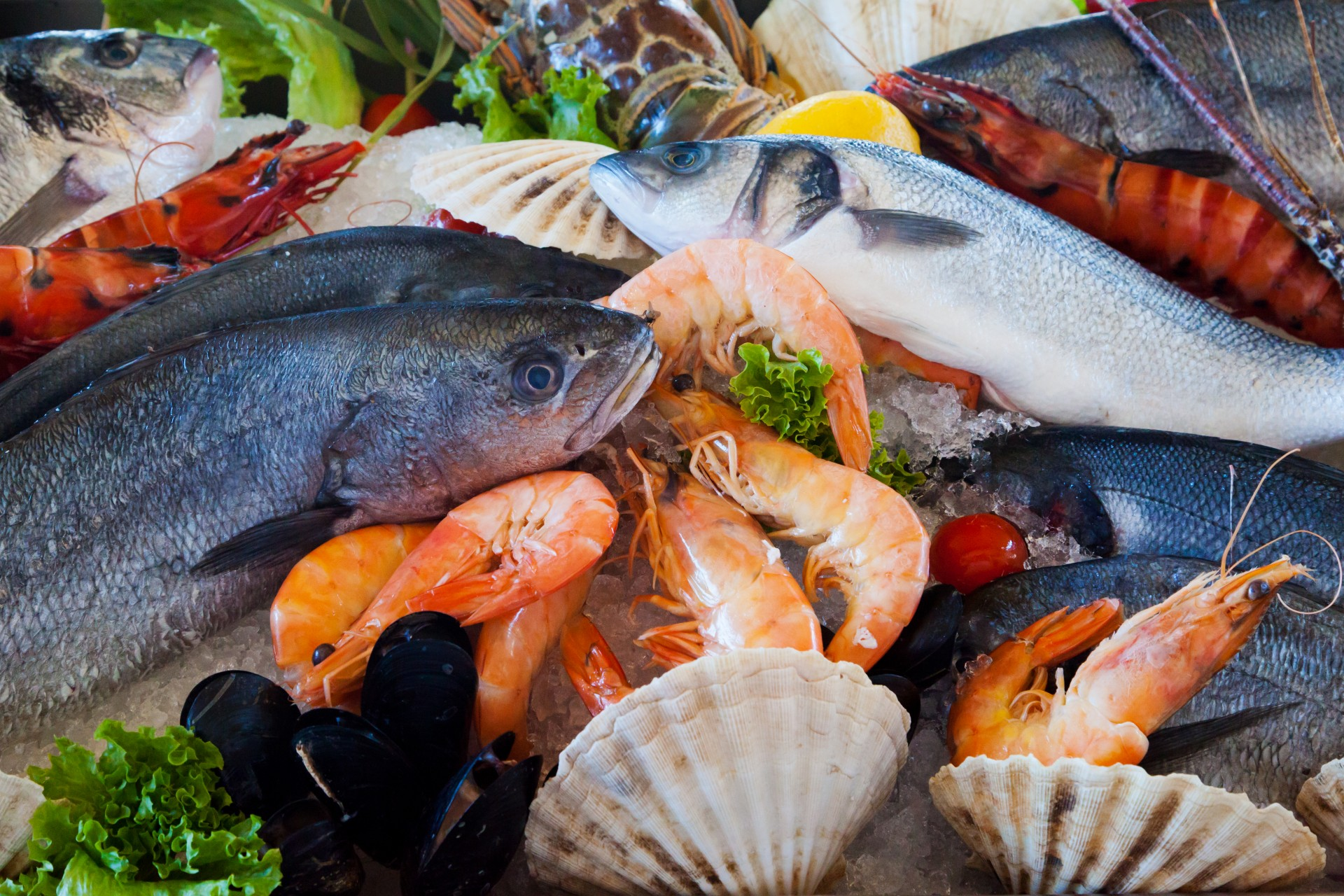 Gfresh raises US$20 Million for importing seafood into China