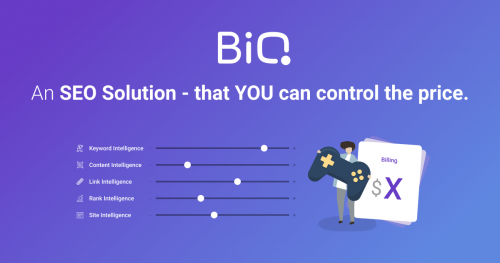 BiQ SEO Solution